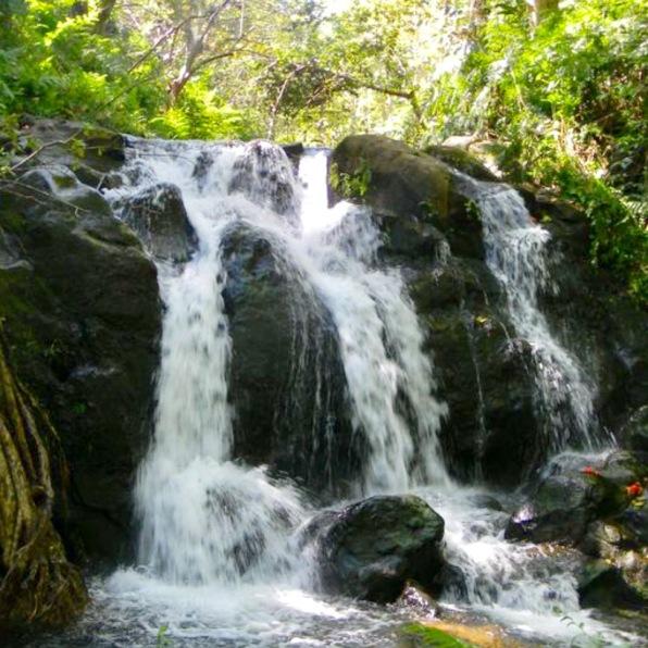 ハワイの滝
